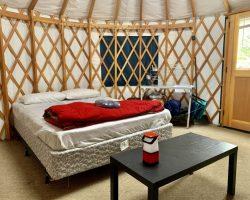 1 Bedroom Yurt