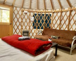 Single Bed in Yurt